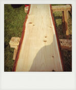 Slice of Cedar for table top. Denmead, Hampshire