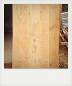 Handmade Douglas Fir barndoor. River, Midhurst, West Sussex.